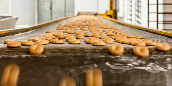 3 questions to ask about software for food processors