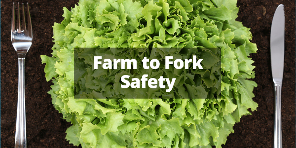Tamlin Farm to Fork Safety